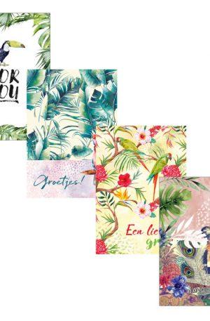 Dubbele wenskaarten tropical - set van 4